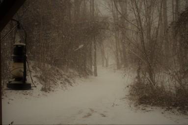 snow4resized (2)