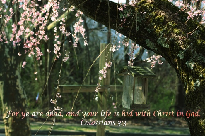 Ye Are Dead and Your Life is Hid in Christ1Resized